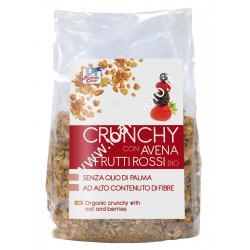 Crunchy con avena e frutti rossi 375g