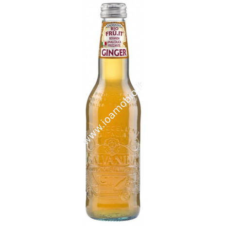 Ginger in Bottiglia 355ml - Galvanina Century BIO
