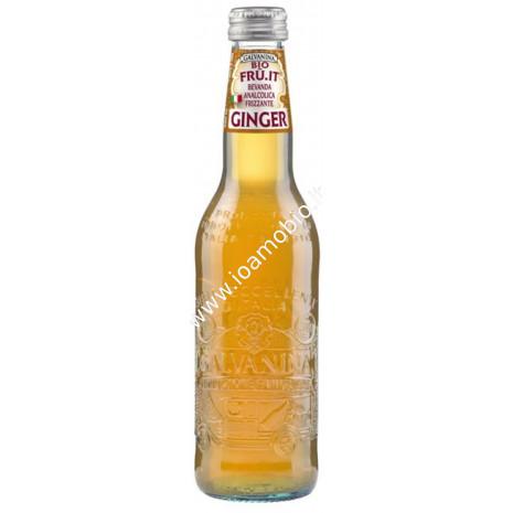 Ginger in bottiglia bio 355ml