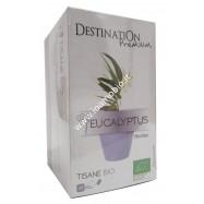Eucalipto bustine 20x1.5g
