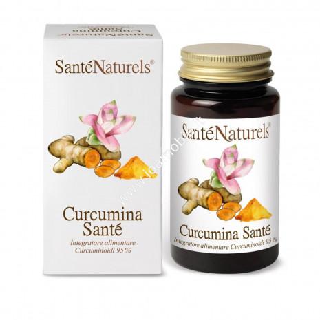 Curcumina Santé 95% 90 cps da 450 mg