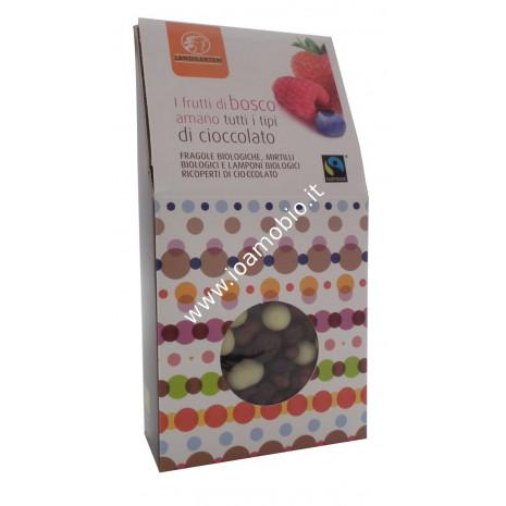 Frutti di Bosco Bio ricoperti di Cioccolato Fondente 90g - Landgarten