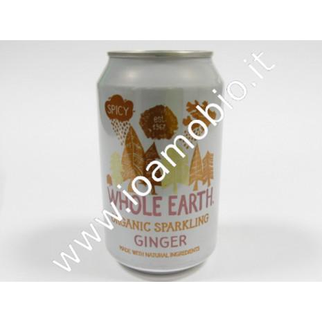 Ginger 330ml
