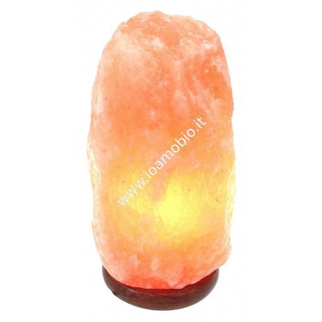 Lampada di Sale Rosa Himalaya 2-3 kg - con Filo e Lampadina - Fior di Loto
